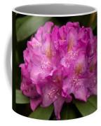 Dewy Rhododendron Coffee Mug
