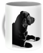 Diamonds Are A Dogs Best Friend Coffee Mug