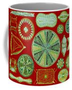 Diatoms-ernst Haeckel Coffee Mug