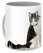 Did I Hear A Mouse Coffee Mug