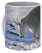Digging For Dinner Coffee Mug