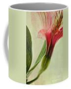 Dim Colours Coffee Mug