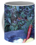 Dinner Anyone? Coffee Mug