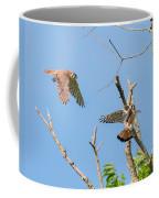 Dinner Time For The Kestrels Coffee Mug