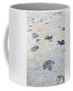 Dinosaur Tracks Coffee Mug