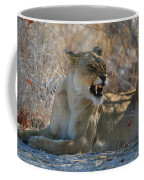 Disgruntled Lioness Coffee Mug