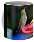 Display Of Colors Coffee Mug