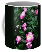 Display Of Romance Coffee Mug