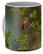 Distant Hummingbird Coffee Mug