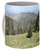 Distant View - Mount Lemmon Coffee Mug