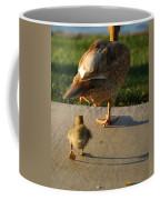 Do What I Do 27709 Coffee Mug