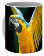 Do Your Exercise Daily Blue And Yellow Macaw Coffee Mug