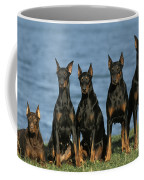 Doberman Pinschers Coffee Mug