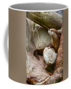Doctor Otter At The Western North Carolina Nature Center Coffee Mug