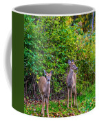 Doe A Deer Coffee Mug