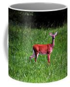 Doe A Deer Coffee Mug