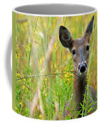Doe In Morning Dew Coffee Mug