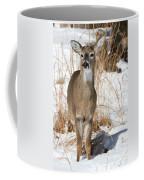Doe In Snow Coffee Mug