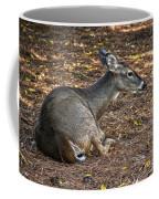 Doe Lying Down Coffee Mug