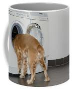 Dog And Washing Machine Coffee Mug