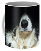 Dog Close Up Coffee Mug