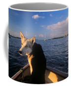 Dog In A Dingy At Put-in-bay Harbor Coffee Mug