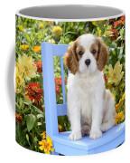 Dog On Blue Chair Coffee Mug by Greg Cuddiford