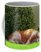 Dog Relaxing Coffee Mug