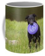 Dogs For Peace Too Coffee Mug