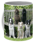 Dogs Sitting On Bench Coffee Mug