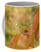 Dogwood Berrie Coffee Mug