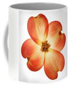 Dogwood Flower Coffee Mug