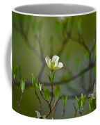 Dogwood II Coffee Mug