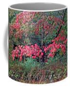 Dogwood Leaves In The Fall Coffee Mug