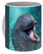 Dolphin Smile Coffee Mug