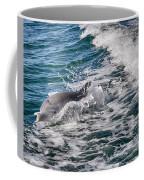 Dolphins Smile Coffee Mug
