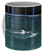 Dolphins Swimming Upside Down As Part Of Show Coffee Mug