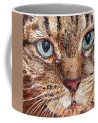 Domestic Tabby Cat Coffee Mug
