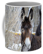 Donkey And The Mule Coffee Mug