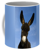 Donkey Foal Coffee Mug