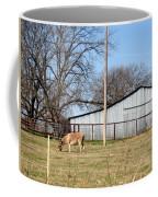 Donkey Lebanon In Oklahoma Coffee Mug