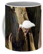 White Ibis Bird Coffee Mug