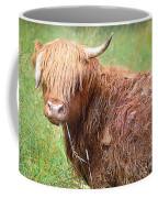 Don't Mess With Texas Coffee Mug