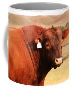 Dont Mess With The Bull Coffee Mug