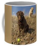 Dont Move Coffee Mug