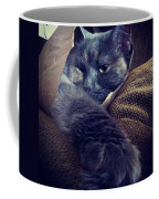 Don't Worry Guys. The Cat's Still In Coffee Mug