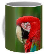 Dont You Dare To Stare Macaw Coffee Mug