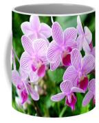 Doritaenopsis Flower Coffee Mug