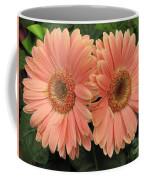 Double Delight - Coral Gerbera Daisies Coffee Mug