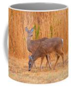 Double Does Coffee Mug